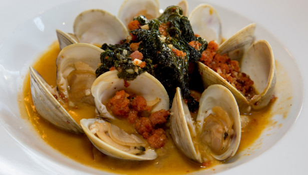 Jos-American-Bistro-Newport-RI-steamed-littlenecks.clams-1 (1)